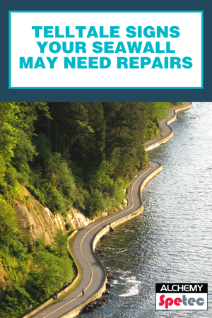 Telltale Signs Your Seawall May Need Repairs