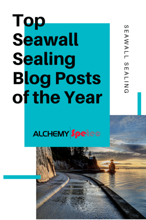 Top Seawall Sealing Blog Posts of the Year