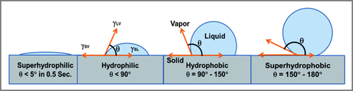 Hydrophilic vs Hydrophobic.png