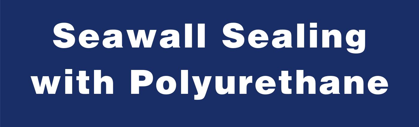 Seawall Sealing with Polyurethane