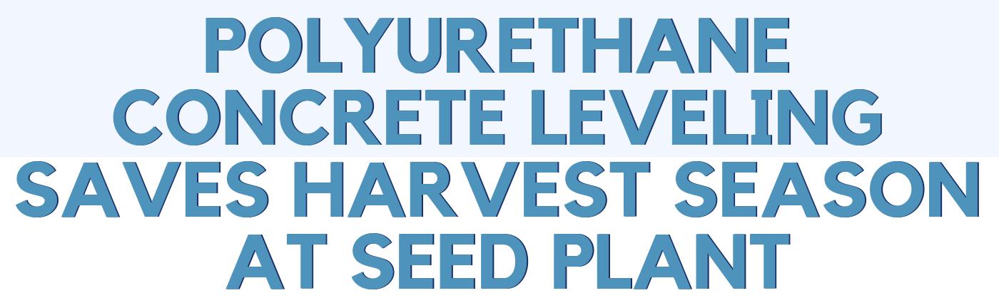 Polyurethane Concrete Leveling Saves Harvest Season at Seed Plant